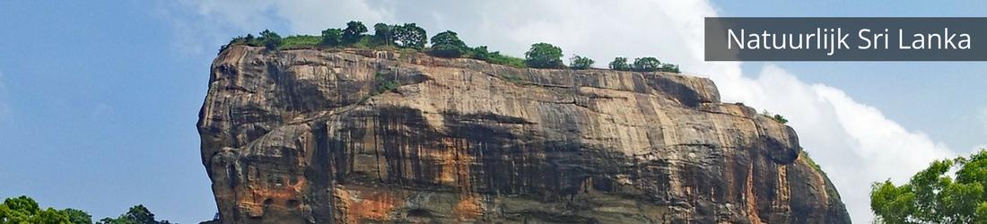 Natuurlijk Sri Lanka, een natuurreis door Sri Lanka