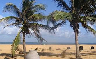 Rondreis en natuurreis ineen door Sri Lanka. Bezoek o.a. Negombo.