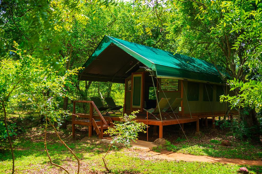 jeep safaris - Kulu - Sri Lanka - tent