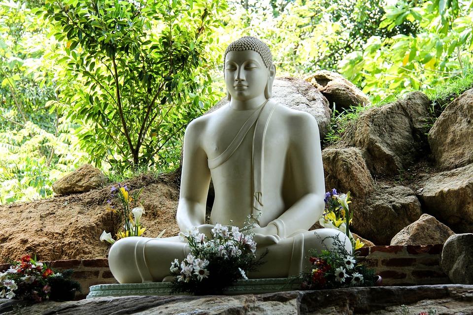 Wat kunt u verwachten van mij als reisadviseur Sri Lanka?