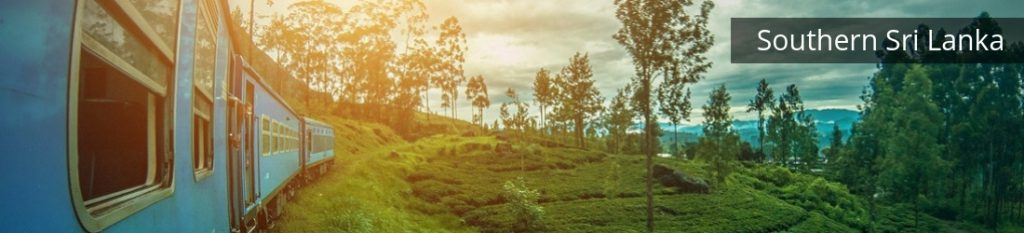 familiereis Sri Lanka met tieners