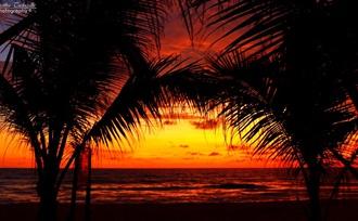 Wat is de beste reistijd voor een rondreis naar Sri Lanka?