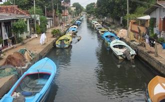 Sri Lanka Regisseur organiseert uw rondreis door Sri Lanka met een start in Negombo