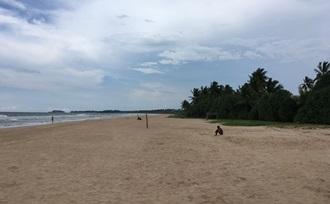 laat de organisatie van uw vakantie naar Sri Lanka aan Sri Lanka Regisseur over